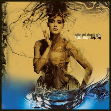 Album Albastri dupa ploi Adrian Berinde